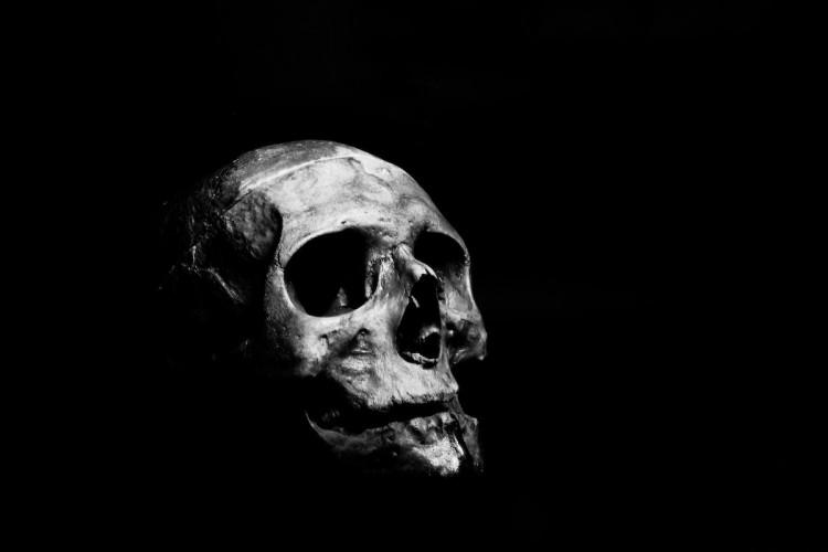 Dilaceratio corporis, une collection pour mieux vivre la mort