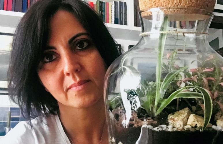 Plantes et livres : cette libraire fabrique des terrariums littéraires