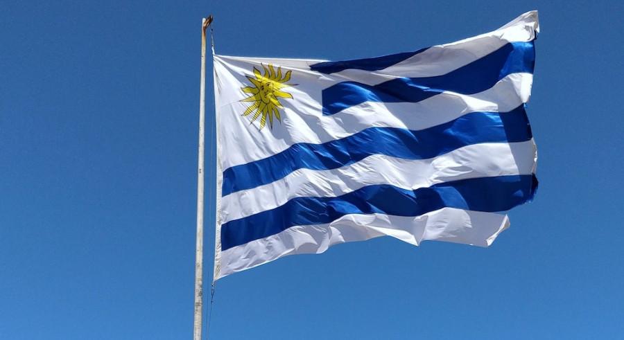 Uruguay : moins de la moitié de la population lit encore des livres