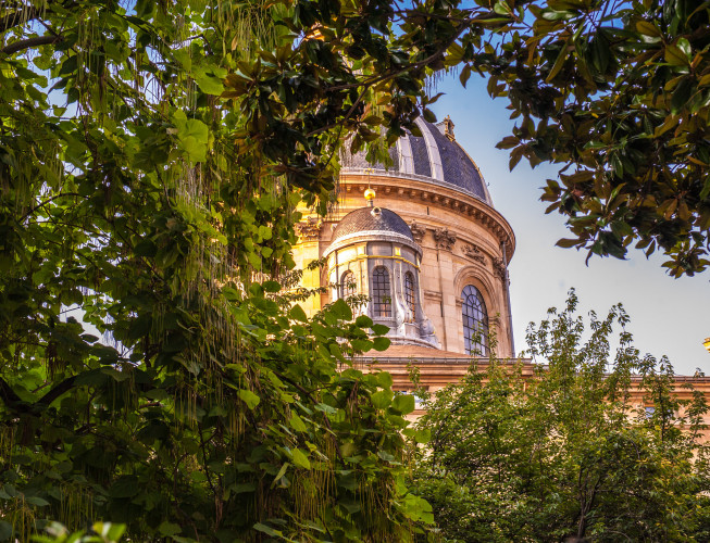 Qui pour succéder à Jean d'Ormesson à l'Académie française ?