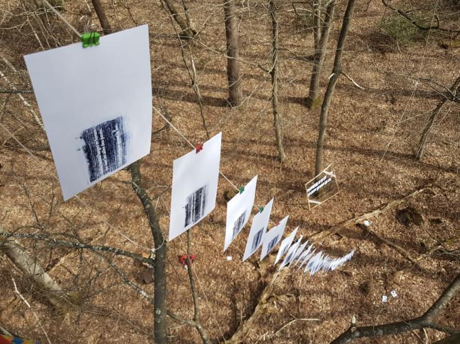 Un livre d'Éric Chevillard édité sur des arbres vivants